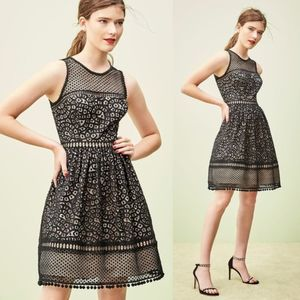 Eliza J Black Nude Lace Sleeveless Mini Dress